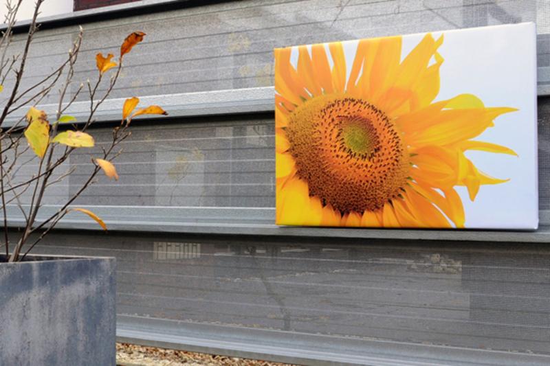 Dagaanbieding - Tuinposter 4cm frame 70 x 100 cm dagelijkse koopjes