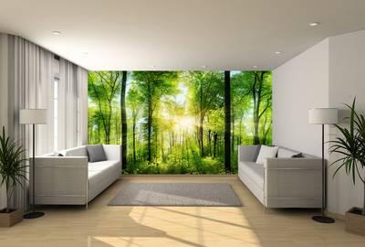 Fotobehang expositie kwaliteit 240x730 cm