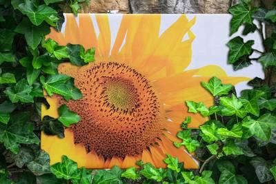 Tuinposter 120x120 Cm