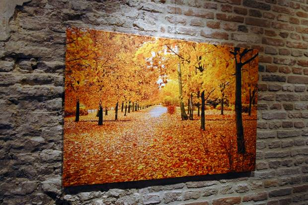 Herfstfoto op fine art canvas