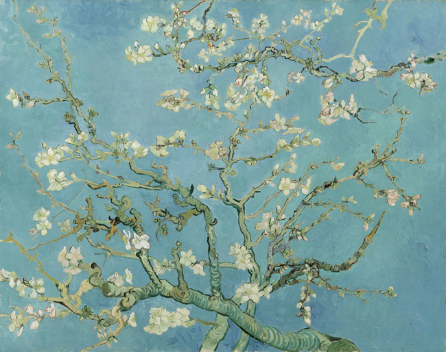 De Amandelbloesem (van Gogh)