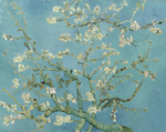 -  - Blossoming Almond Tree.jpg